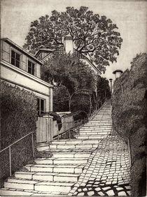 Steiler Weg  by Dieter Tautz