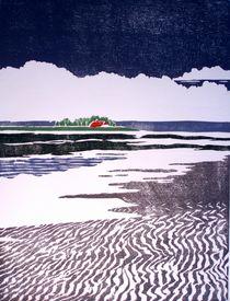 im Watt by Dieter Tautz