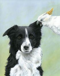 Der Hundeflüsterer by Christine Schmiech