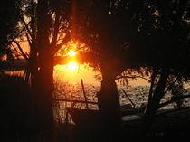 Abendsonne an der Treene by Elke Schmidt