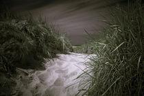 Auf der Suche nach dem Meer von Holger Nieser
