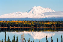Autumn View of Mt. Drum (Alaska) by Juergen Weiss