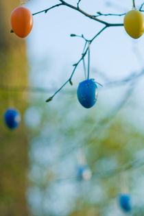 Osterbaum mit eiern von Grzegorz Bieniek