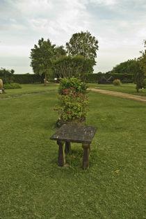 Garten Eden by Grzegorz Bieniek