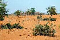 Sahelzone 06 von Walter Vymyslicky