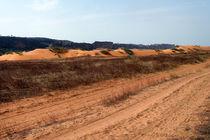 Sahelzone 08 von Walter Vymyslicky