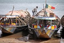 Boote am Niger 2 by Walter Vymyslicky