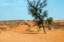 Sahelzone 04 von Walter Vymyslicky