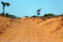 Sahelzone 05 von Walter Vymyslicky