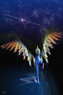 Pegasus von Elke Tietz