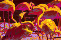 Flamingos by claudia Otte