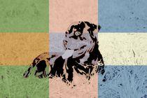 Popart Hund II by Gabriela Wejat-Zaretzke