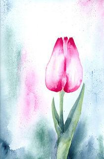 Tulpe I by farbart