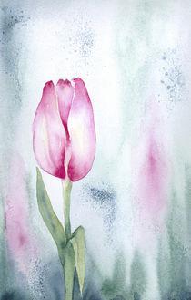 Tulpe II von farbart