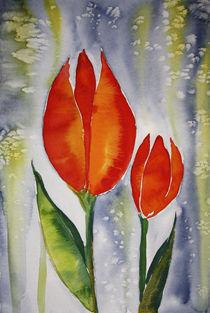 Tulpen abstrakt 1 von farbart