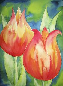 Tulpen Orange by farbart