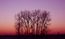 Sonnenuntergang am Stadtrand by farbart