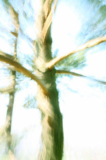 Dancing Tree by farbart