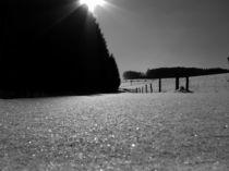 Les Temps Blanc by Johnny Rivel