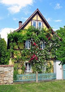 Blumenhaus von edler