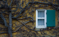 Fuggerei by Dimitry Khaskin