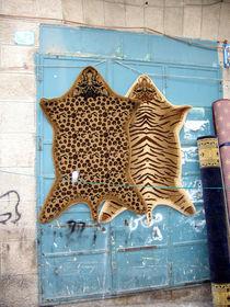Zusammen, Bethlehem by Greta Znojemsky