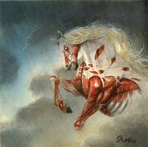 Ein Totes Pferd Satteln by alarie