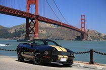 Shelby und Golden Gate Bridge by geoland
