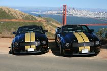 Bruderpaar Shelbys am Golden Gate by geoland