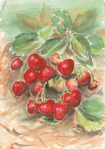 Erdbeeren von Caroline Lembke
