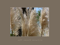 soft smooth sensitive I by Beatrice Amberg