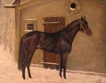 Der alte Pferdestall by Birgit Schnapp
