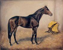 Rennpferd by Birgit Schnapp