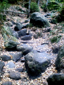 natürlicher Steinweg von mondschwester