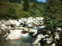 Ein schönes natürliches Flusstal von mondschwester