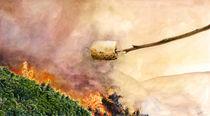 Waldbrand von Frederik Mettjes