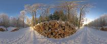 Holzstapel im Winterwald by Michael Hundrieser