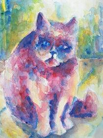 Katze fragend von Claudia Pflicke