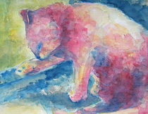 Katzenwäsche von Claudia Pflicke