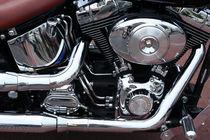 Harley4 by dirio