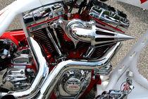 Harley11 by dirio