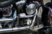Harley13 von dirio