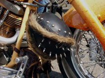 Harley14 by dirio