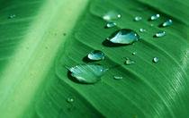 Wassertropfen von dirio