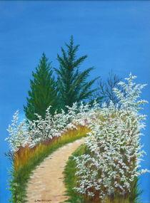 Ein Stück vom Himmel von Helga Mosbacher