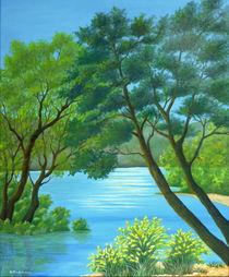Am Lac de Ste Croix von Helga Mosbacher