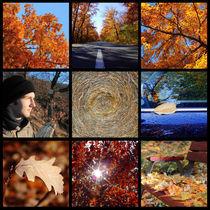 Herbst Detail Collage von rotschwarzdesign