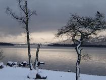Loch Lomond von Jackie Hagan