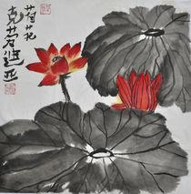 Lotosblume von Claudia Janßen