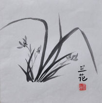 Wilde Orchideen by Claudia Janßen